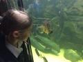 Yr4 Bristol Zoo 1